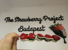 Trhe Strawberry Project