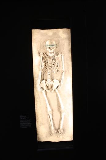 Państwowe Muzeum Prehistorii w Halle